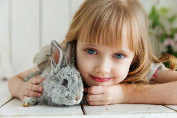 7 voordelen van het hebben van een huisdier
